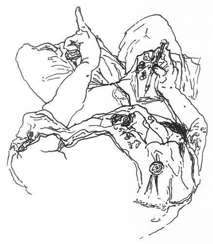 Lysistrata Karch-Coar